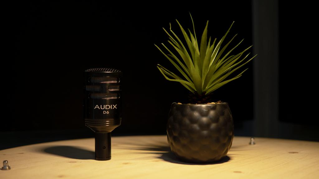 microfono per batteria Audix D6 appoggiato su tavolo vicino a pianta grassa in vaso